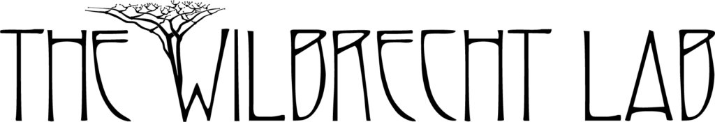 Wilbrecht Lab Logo
